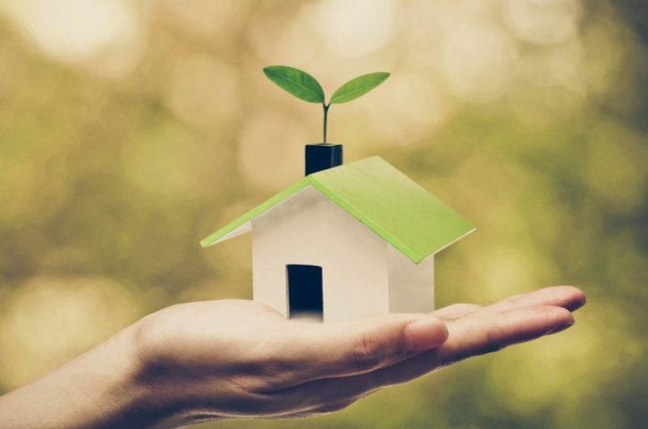 Home Improvement on a Budget